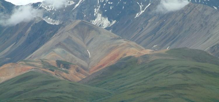 15 juli 2007 Denali NP