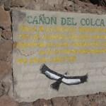 23 juli 2011 Colca Canyon – Puno (3827m)