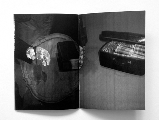 © Sebastian Haslauer, 13 x 19 cm, 20 pages, black and white photocopy, edition of 100