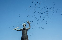 fredric nord photography phosmag statue birds