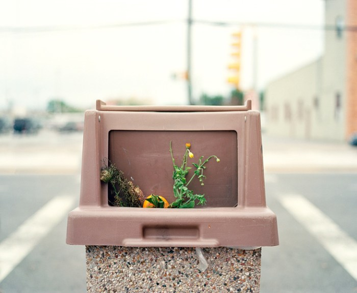 """© Dana Stirling, """"Wendys"""" from the series """"Cache"""""""