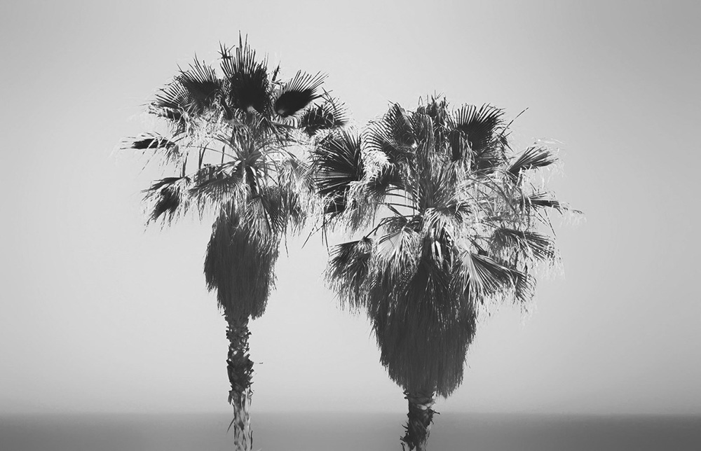 GriseldaDuchspain photography phosmag online magazine