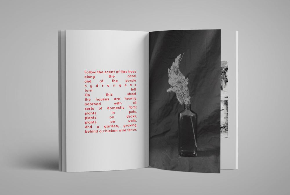 Zuri Camille de Souza Maela Ohana phosmag photography online magazine