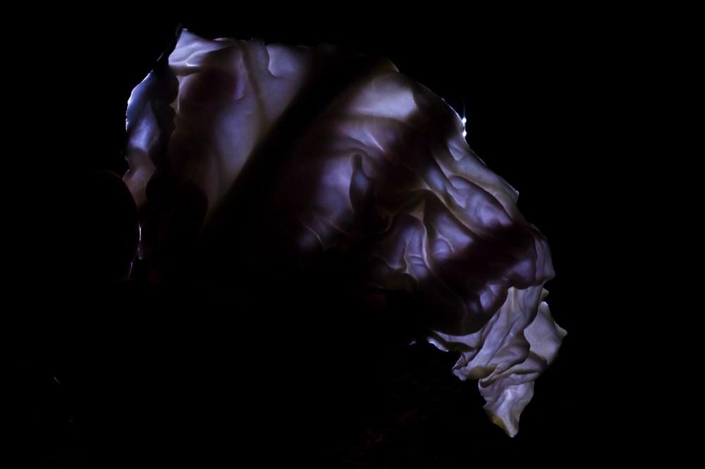 Fili Olsefski poland phosmag photography pulsar