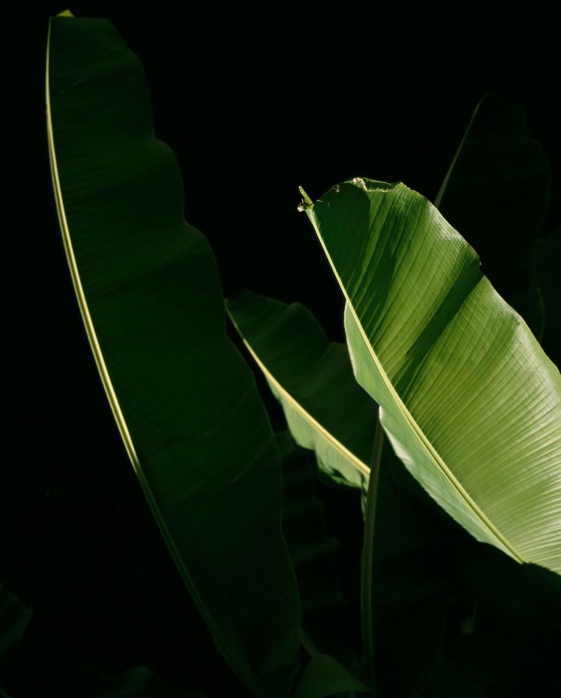 © Tito Mouraz Portugal photography phosmag