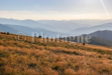 Chevaux en pays Basque