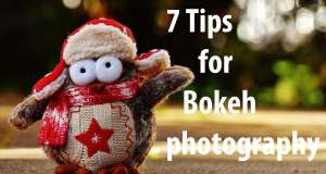 bokeh-photography-tips