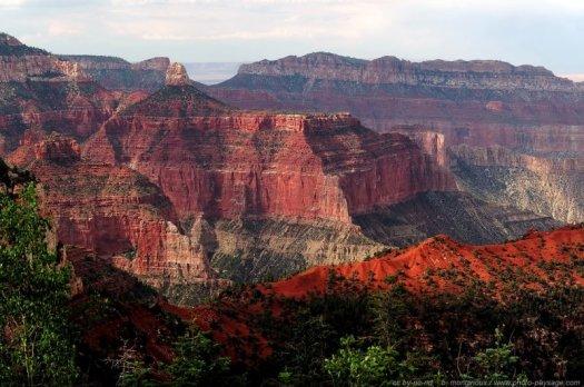 Un paysage de falaises rouges, parsemé de du vert de la végétation. Grand Canyon National Park (