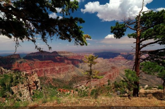 Le Grand Canyon vu depuis Point Impérial (North Rim), Arizona, USA
