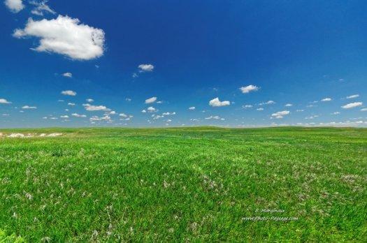 Une prairie verdoyante sur le plateau du parc national des Badlands. Dakota du Sud, USA