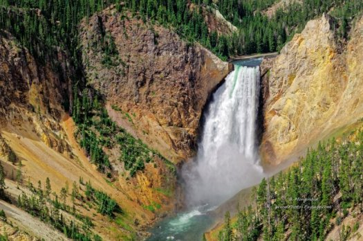 Yellowstone, la cascade des Lower Falls, photographiée depuis le Grand Canyon de Yellowstone. Wyoming, USA