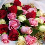 باقة صور اجمل الورود في العالم 2019 صور ازهار ملونة