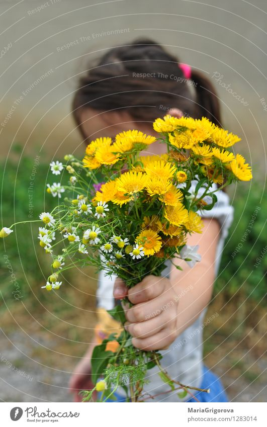 cute little girl holding a bouquet of wildflowers  a Royalty Free Stock Photo from Photocase