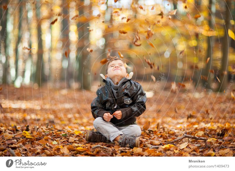 Human being Child Leaf Joy  a Royalty Free Stock Photo from Photocase