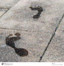 Barefoot Wet Concrete