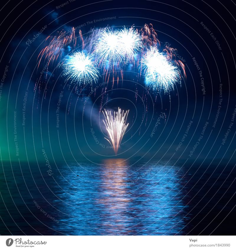 Blue colorful fireworks on the black sky  a Royalty Free Stock Photo from Photocase