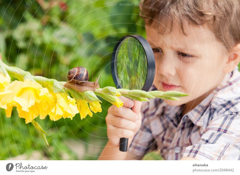 Happy little girl exploring nature with magnifying glass  a Royalty Free Stock Photo from Photocase