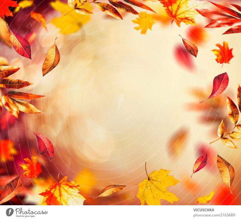 Fall Leaves Wallpaper Border Herbst Hintergrund Mit Fliegenden Bunten Bl 228 Tter Ein