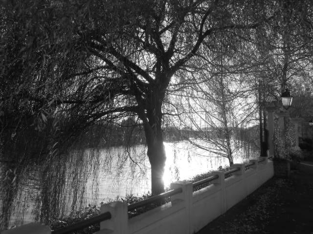 Photo Club Thorigny