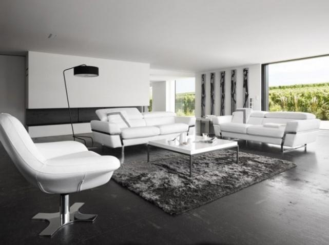 decoration salon noir et blanc design