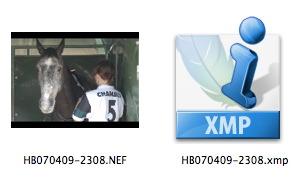 RAW, DNG, PSD, JPG, TIFF : les formats de fichiers photo