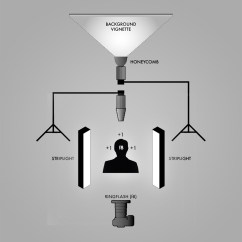 Studio Lighting Diagram Muscular System Without Labels Photofusion