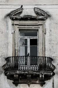 Tauben vorm Fenster (entsaettigt) - PHOTOGALERIE WIESBADEN - im süden - fenster und türen