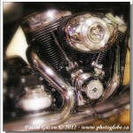 Harley #6…Du Chrome