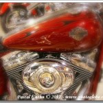 Harley #9 – 96 Cubic Inches