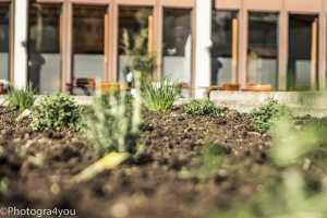 Garten-Nerd-16-18-e1460322637691 Garten Nerd 16-18