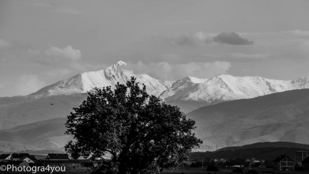 2016_Kosovo_Budakova_Palushi-68-e1466246961641-622x350 Nature