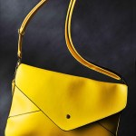 fashion accessory a flying bag