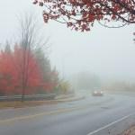 morning in fall