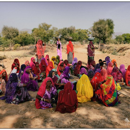 early morning coloured sarees in rajasthan