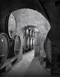 Montepulciano Winery, Tuscany
