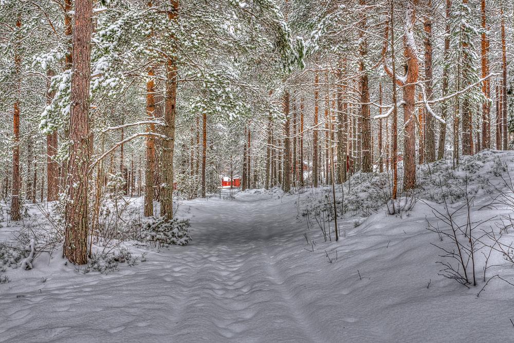 Summerland in Winter