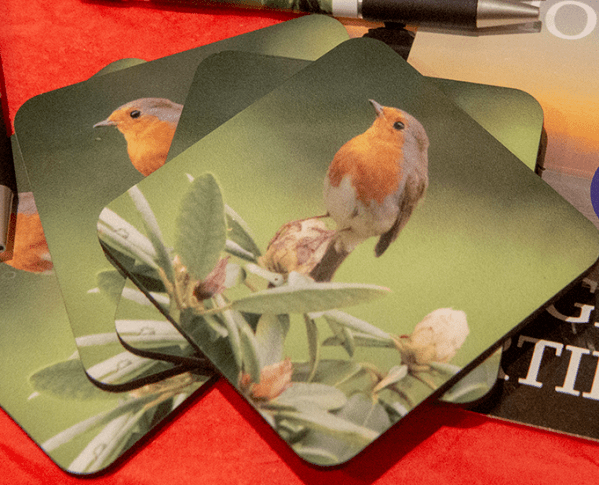 Photo Coaster - Red Robin. A pack of 4 photo coasters from Dave Mutton Photography