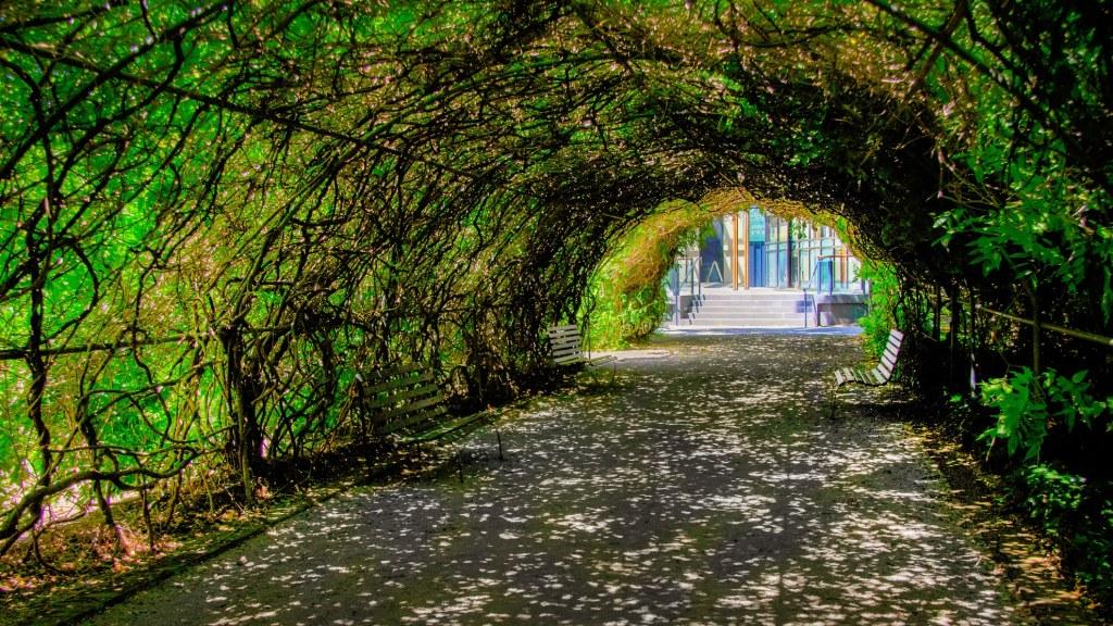 Botanic Garden Arch