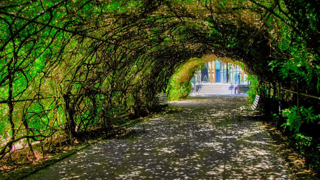 Botanic Gardens Arch to Future