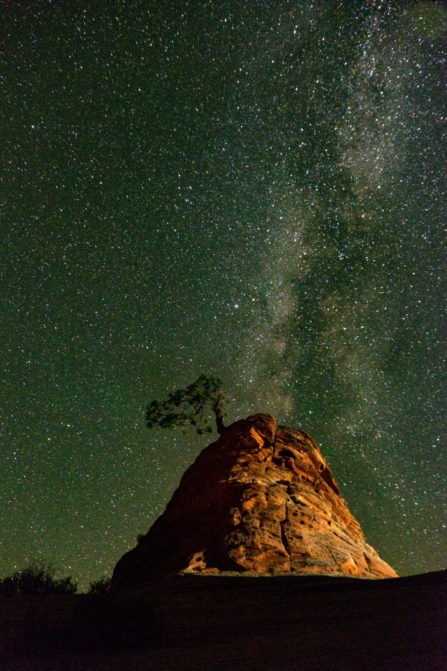 Milky Way Over The Bonsai Tree At Zion Photography Travel