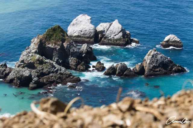 Photographer's guide to Big Sur California