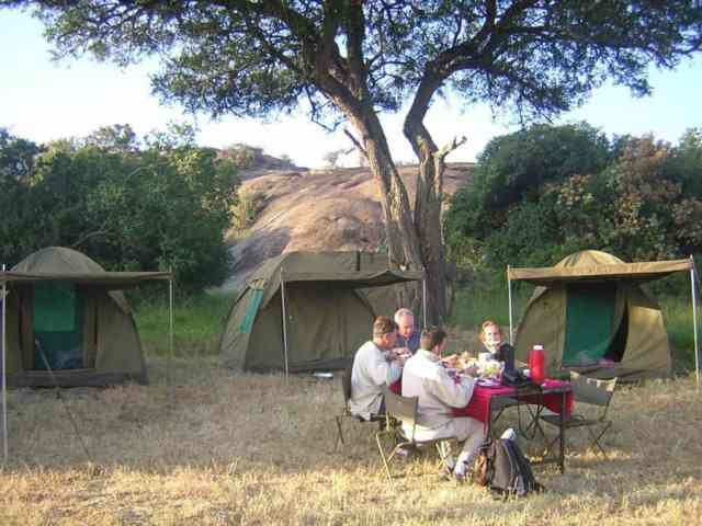 guide to africa safaris