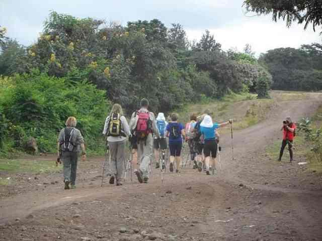 guide to african safari