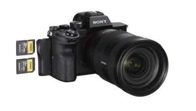Photoinfo.org Sony-Alpha-7R-IV-4