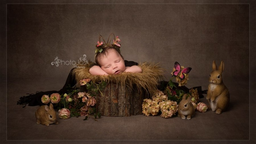 Sleeping newborn baby portrait by Photojos Photography