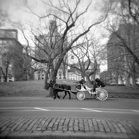201202-newyork033