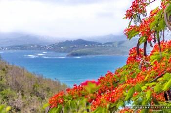 Martinique_021-christophe-Mastelli-photographe-marseille.jpg