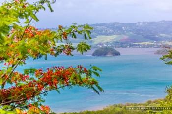 Martinique_025-christophe-Mastelli-photographe-marseille.jpg