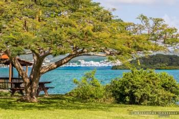 Martinique_067-christophe-Mastelli-photographe-marseille.jpg