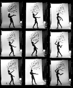 Daphne contact sheet